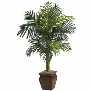 Charming Palm In Decorative Vase