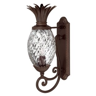 Terry 1 Light Outdoor Pinele Shaped Wall Lantern
