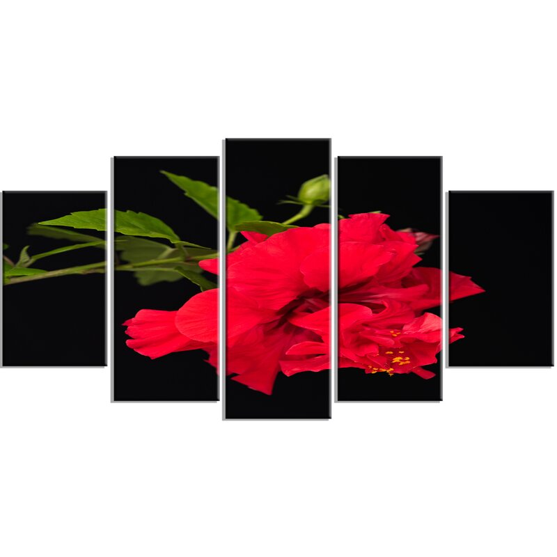 DesignArt \'Bright Red Hibiscus on Black\' 5 Piece Wall Art on Wrapped ...