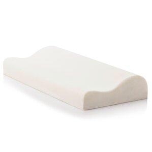 Contour Dough Memory Foam Standard Pillow by Malouf