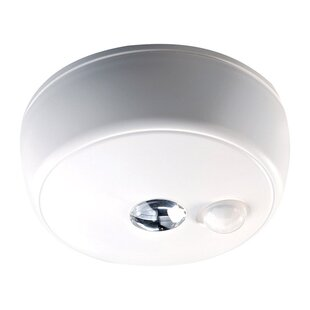 Motion Sensor Ceiling Light | Wayfair