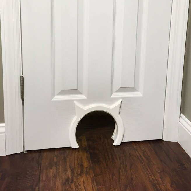 Cat Video Open Door To Let Cats Out