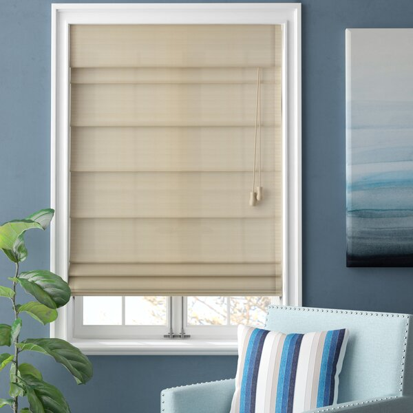 Beachcrest Home Blackout Roman Shade & Reviews