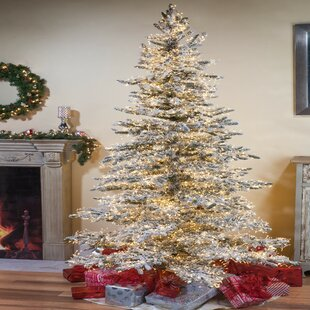 wyoming snow flocked 75 green pine artificial christmas tree with 6672 warm white led lights with stand
