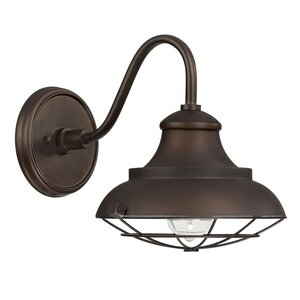 Hallsboro 1-Light Outdoor Barn Light