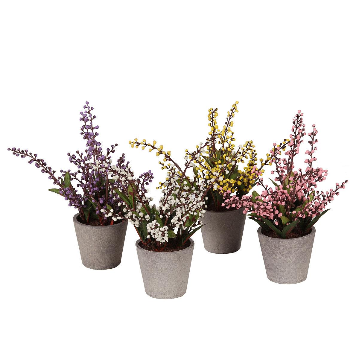 4 Piece Heather Plant Set