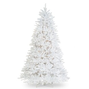 65 white fir artificial christmas tree with 650 clear lights
