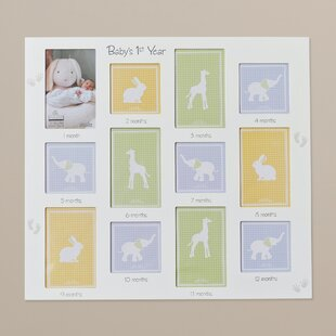 Baby 12 Month Frame Wayfair