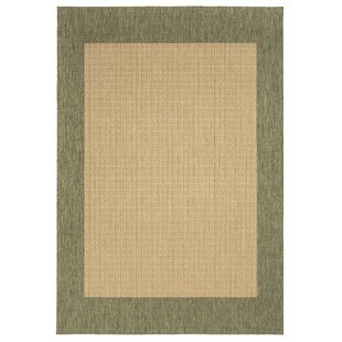 Checkered Green Brown Rug