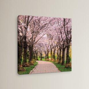 Cherry Blossom Trail Photographic Print on Wrapped Canvas & Cherry Blossom Dinnerware | Wayfair