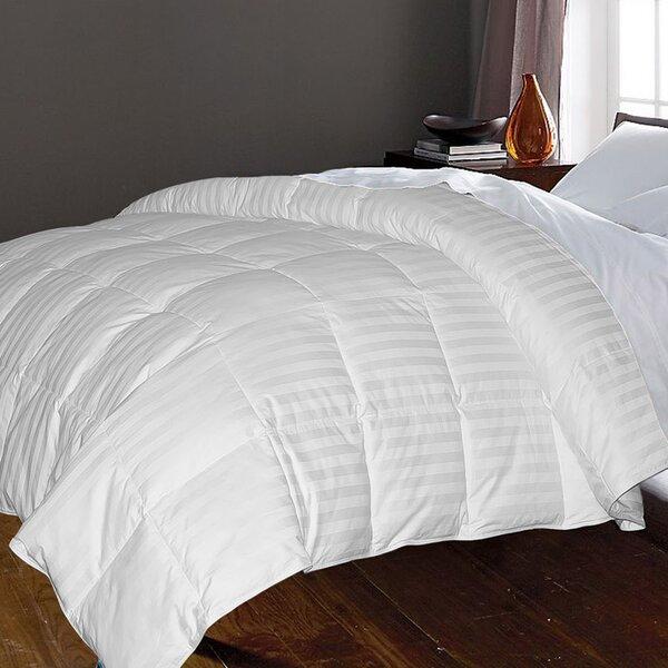 Blue Ridge Home Fashion 350 Thread Count All Season Down Comforter