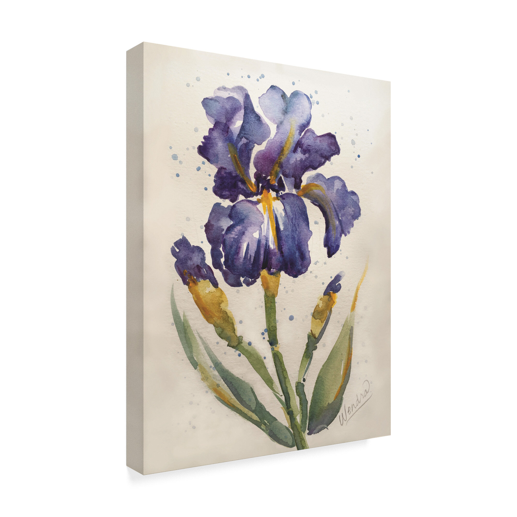 Trademark Art Blue Painted Iris Acrylic Painting Print On Wrapped