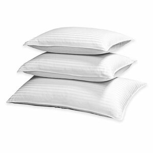 Down and Feathers Pillow by Blue Ridge Home Fashions
