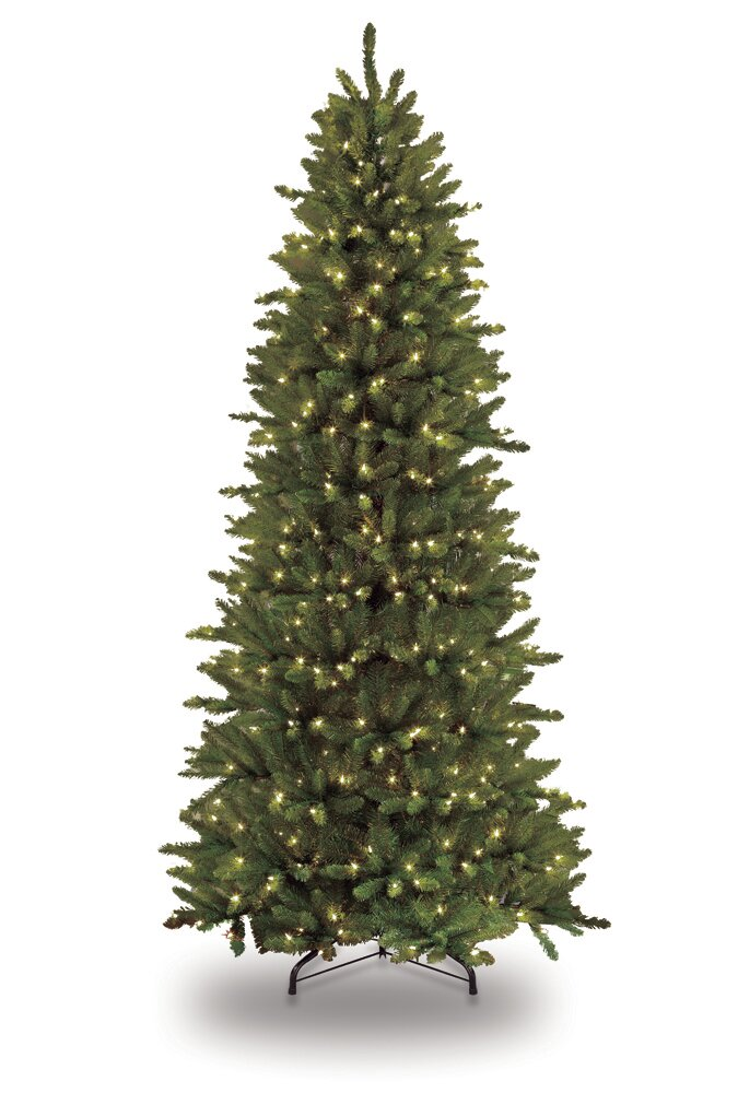 Pre-lit Slim Fraser 12' Green Fir Artificial Christmas Tree with 1200 Clear  Lights with Stand - Pre-Lit Christmas Trees You'll Love Wayfair