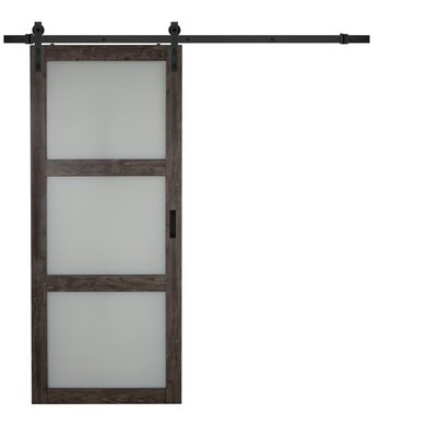 Erias Home Designs Continental Glass Barn Door with Installation Hardware Kit Finish: Ironage Gray