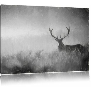 Red Deer Stag In The Mist Wall Art On Canvas