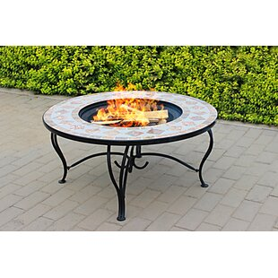 Freer Steel Charcoal Wood Burning Fire Pit Table