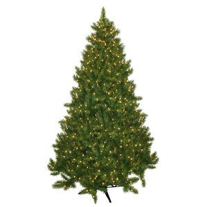 75 evergreen fir artificial christmas tree with 700 clear lights - White Pre Lit Christmas Tree