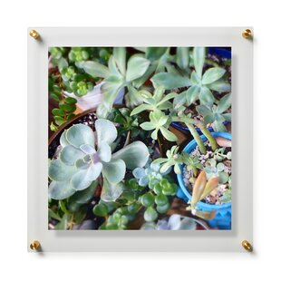 20 X 24 Picture Frames Youll Love Wayfair