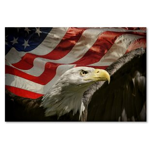 e742180fe0d2  American Eagle  Graphic Art Print on Wrapped Canvas