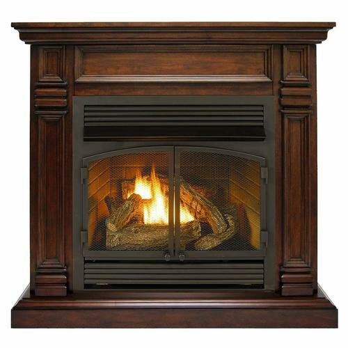 Darby Home Co Fonda Vent Free Natural Gas Propane Fireplace