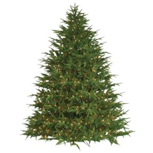 Extra Full Christmas Trees You Ll Love Wayfair
