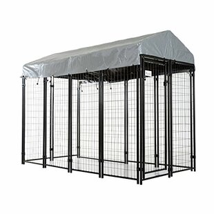 Outdoor Covered Dog Yard Kennel