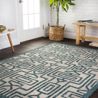 Bay Isle Home Summerfield Teal  Area Rug Rug Size: Rectangle 9'2 x 12'1