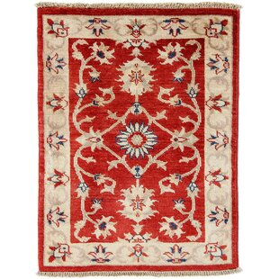 Eugene Hand Knotted Wool Red Rug by Rosalind Wheeler