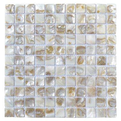 """1"""" X 1"""" Seashell Mosaic Tile Art3d"""