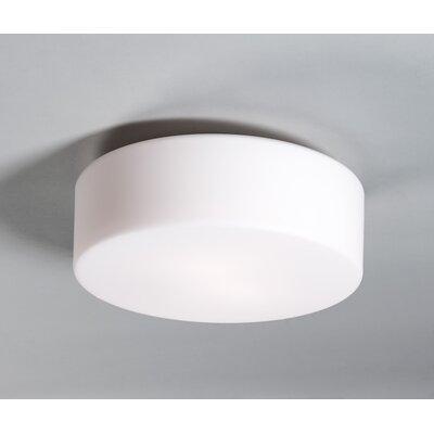 Wrought Studio Aurora 1-Light Flush Mount Bulb Type: Incandescent, Size: 12 H x 12 W x 5 D