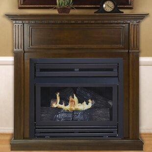 Propane Fireplace Indoor | Wayfair