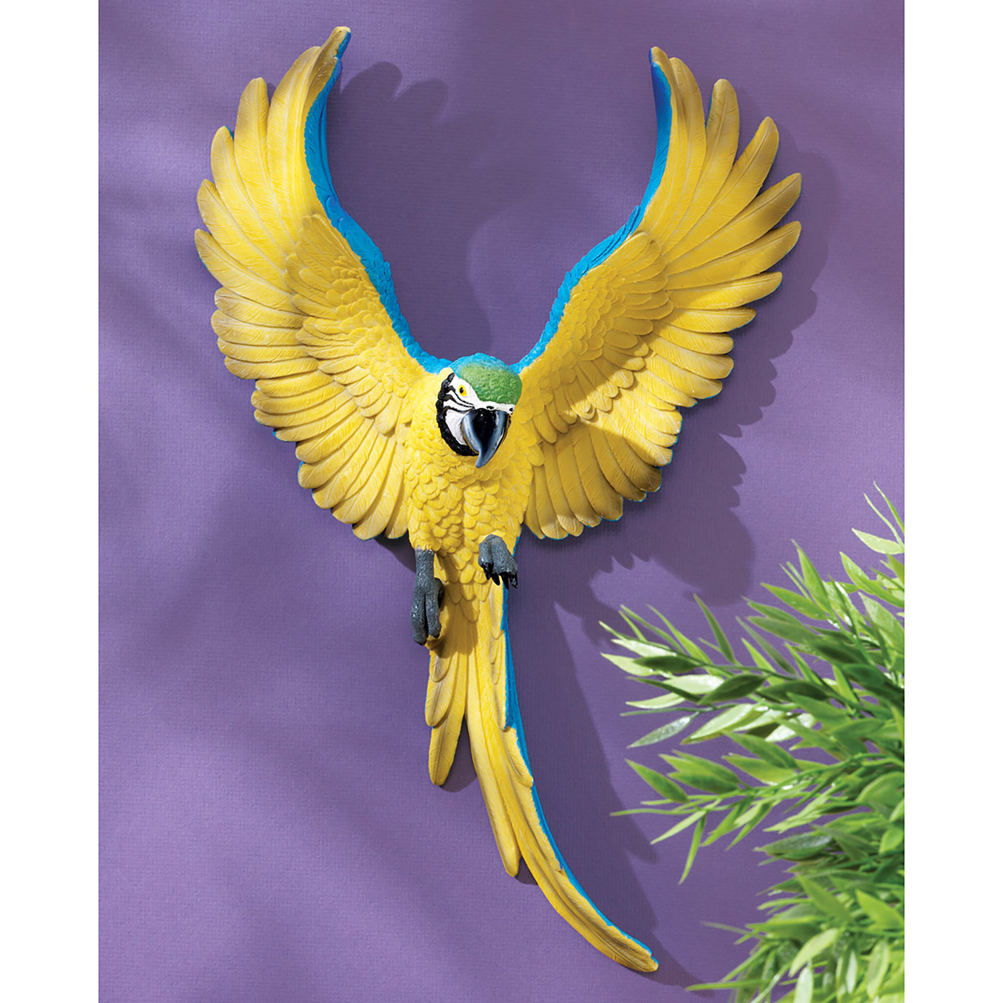 Design Toscano Phineas the Flapping Macaw Bird Wall Décor & Reviews ...