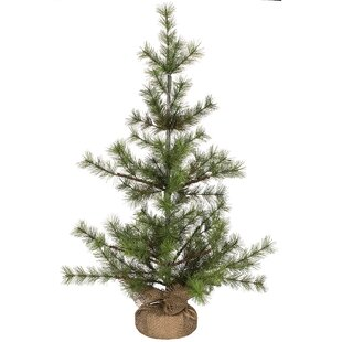 Relatively Mini Christmas Trees You'll Love | Wayfair RB89