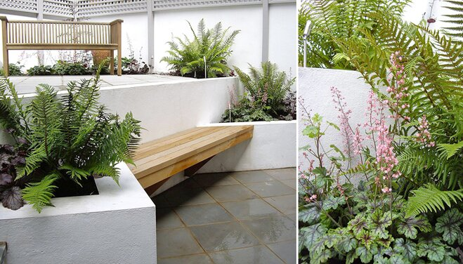 Modern, White Garden With Green Foliage By Sarah Oxby