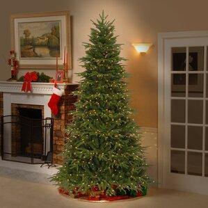 dual color christmas tree wayfair - Colored Christmas Tree