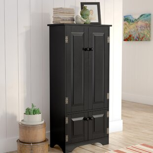 Amazing Tall Cabinets With Doors Creative