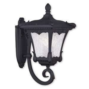Futrell 3-Light Outdoor Sconce