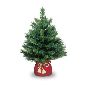 small majestic fir tree - Small Black Christmas Tree