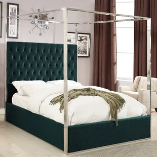 Forest Canopy Bed Wayfair Ca
