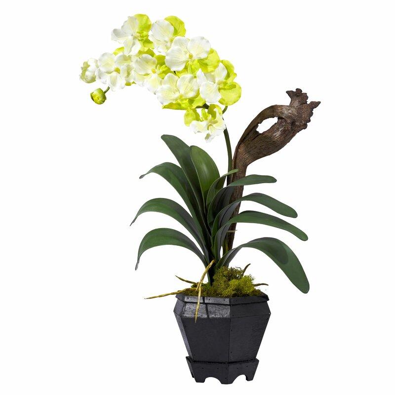Nearly Natural Vanda With Black Hexagon Vase Silk Flowers In White