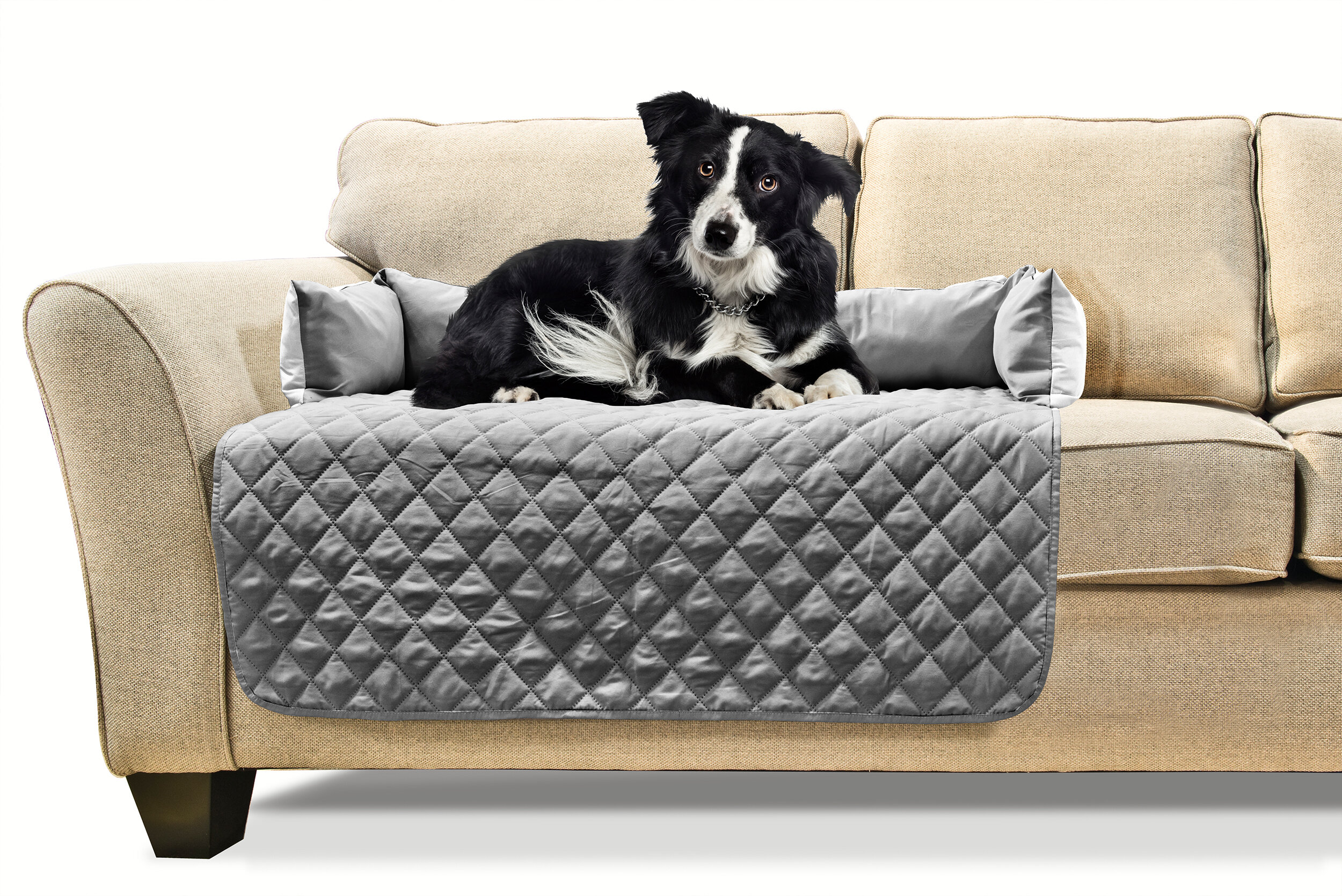 FurHaven Buddy Quilted Box Cushion Sofa Slipcover & Reviews | Wayfair