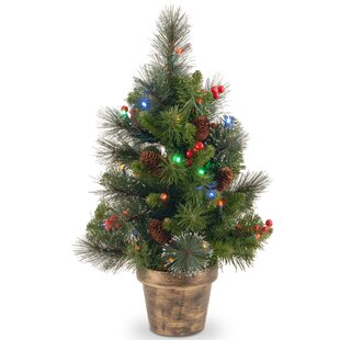Spruce Small 2' Green Artificial Christmas Tree with 35 Multicolored Lights