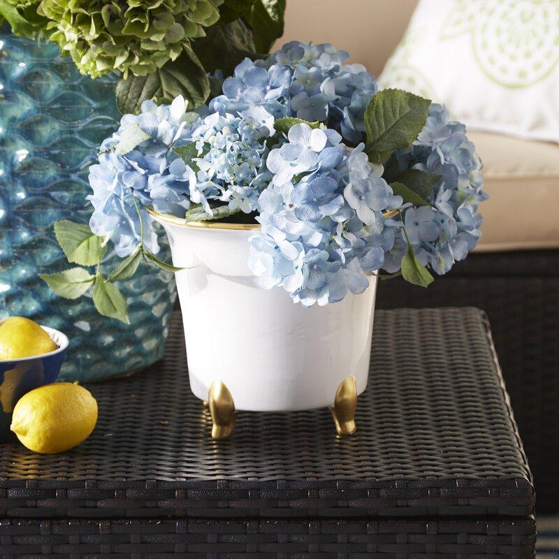 Kitchen Garden Jaipur: Abigails Jaipur Ceramic Pot Planter & Reviews
