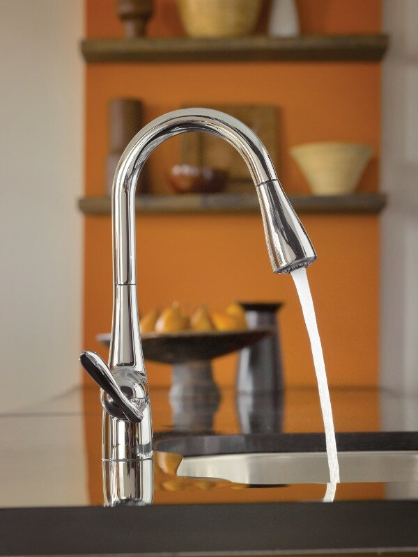Moen Arbor Pull Down Single Handle Kitchen Faucet with Reflex System ...