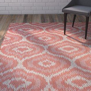 Aker Red Indoor/Outdoor Area Rug