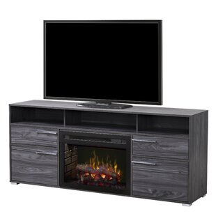 Sander 66 Tv Stand With Fireplace