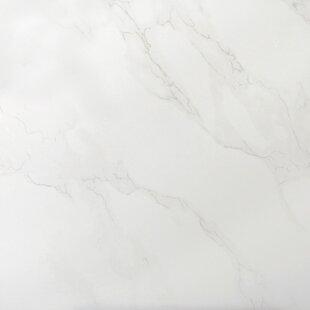 Paladino 24 X Porcelain Field Tile In Albanella