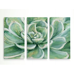 U0027Succulentu0027 Acrylic Painting Print Multi Piece Image On Gallery Wrapped  Canvas
