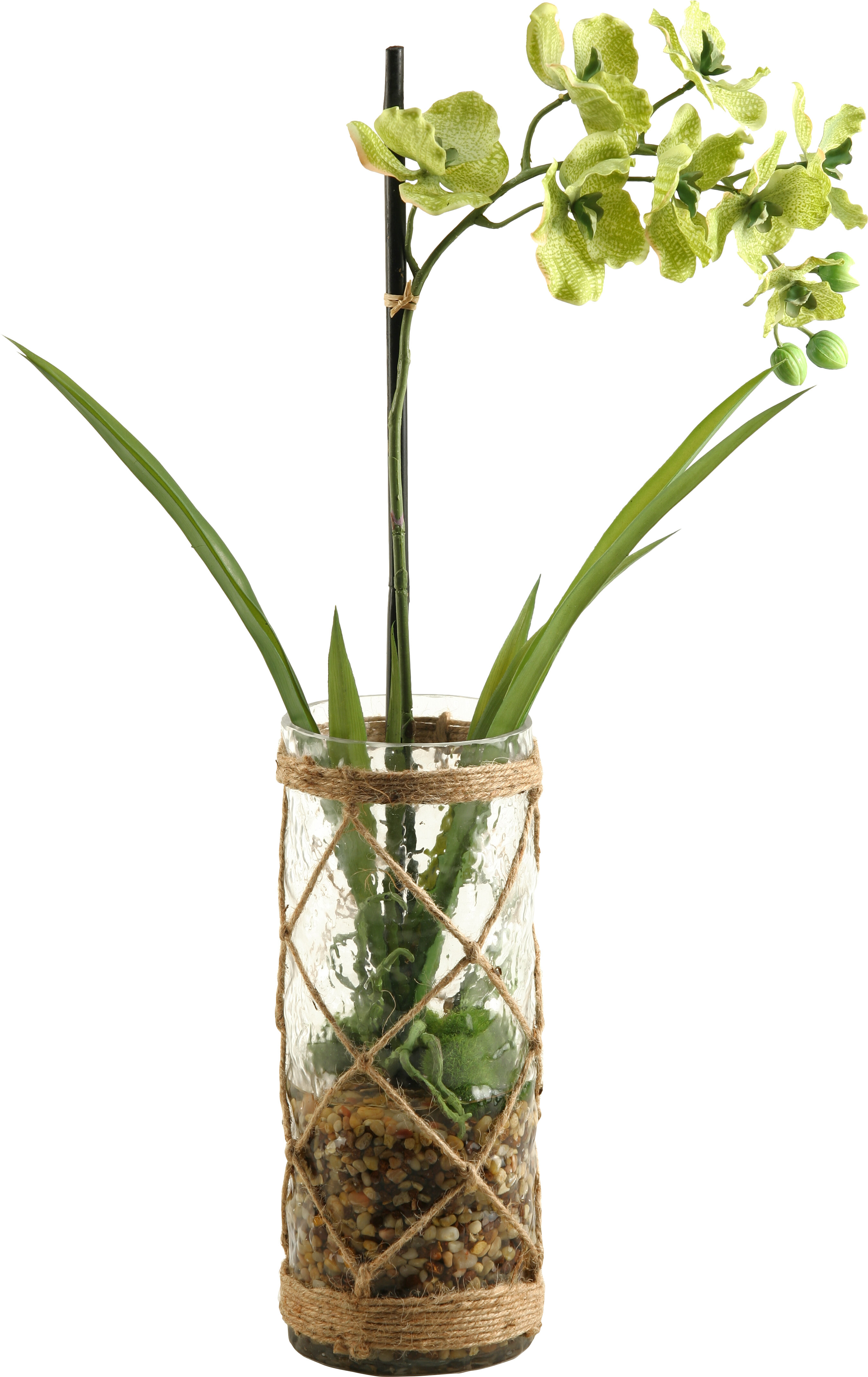 Vanda Orchid with Seagrass Netting Floral Arrangements in Glass Vase ...